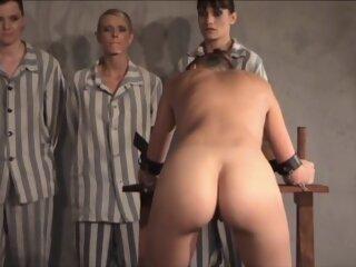 Free Brutal Sex